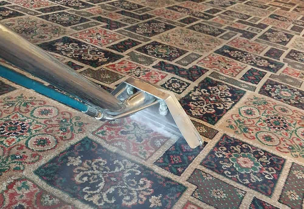 How Often Should I Be Calling in a Carpet Cleaning Company